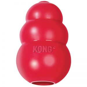 toys for dogs Kongs