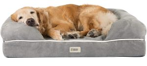 Personalized Poodle Beds