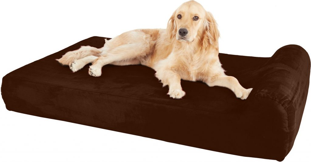 Best Beds for Royal Poodles